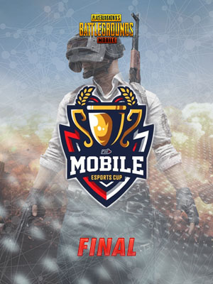 Poster of PUBG FINAL - Game 6